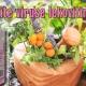 Pobedite viruse lekovitim biljem