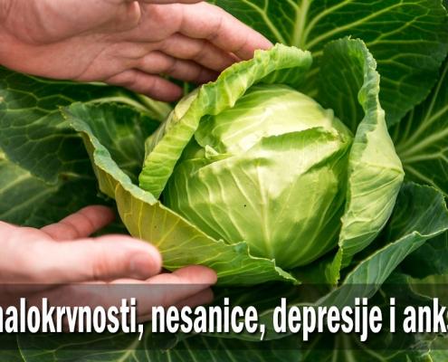 Lek kod malokrvnosti, nesanice, depresije i anksioznosti