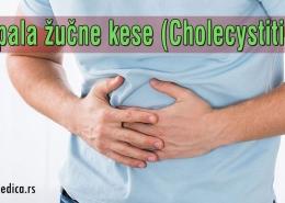 Upala žučne kese (Cholecystitis)