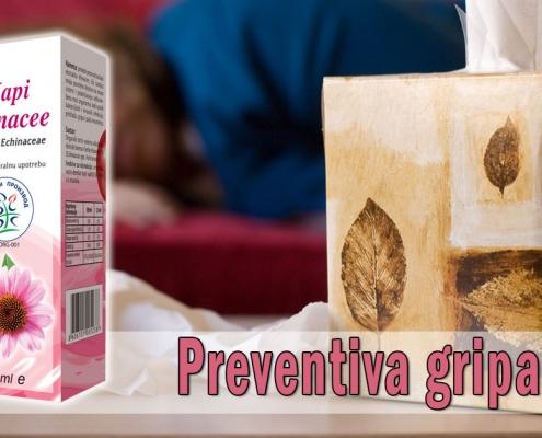 Preventiva gripa