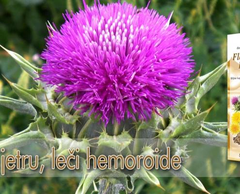 Čisti jetru, leči hemoroide