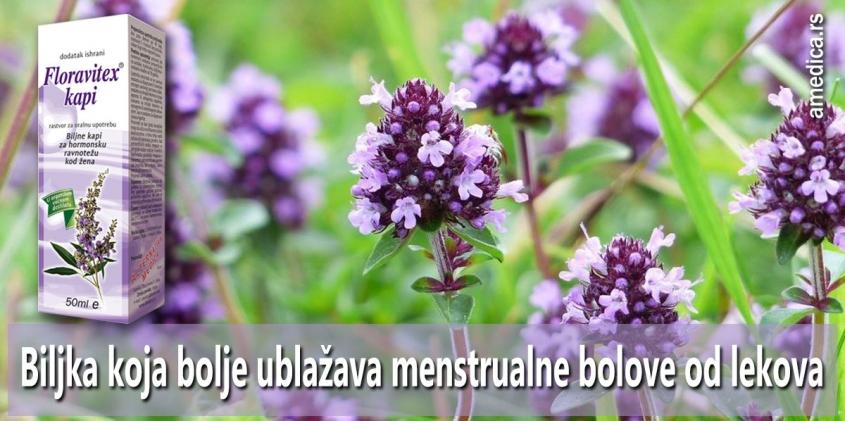 Biljka koja bolje ublažava menstrualne bolove od lekova