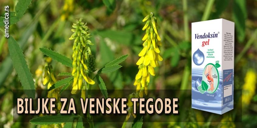 Biljke za venske tegobe