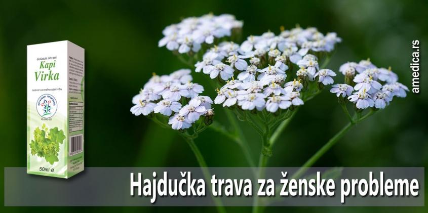 Hajdučka trava za ženske probleme