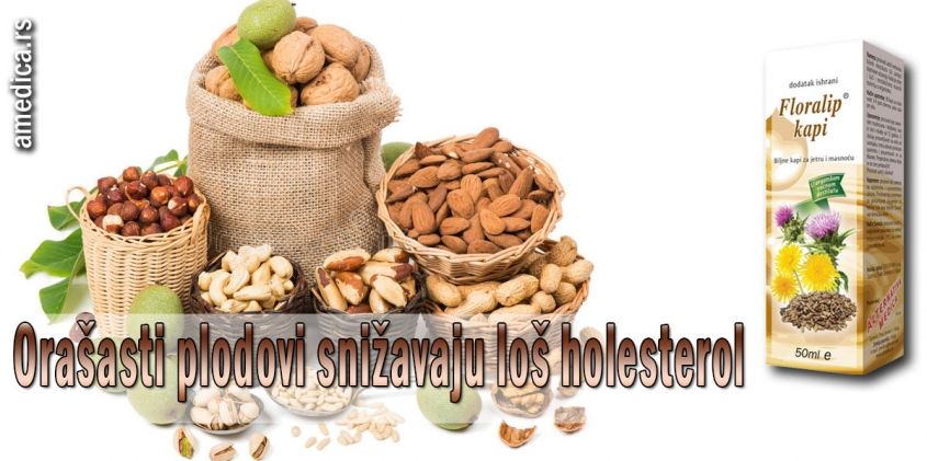 Orašasti plodovi snižavaju loš holesterol